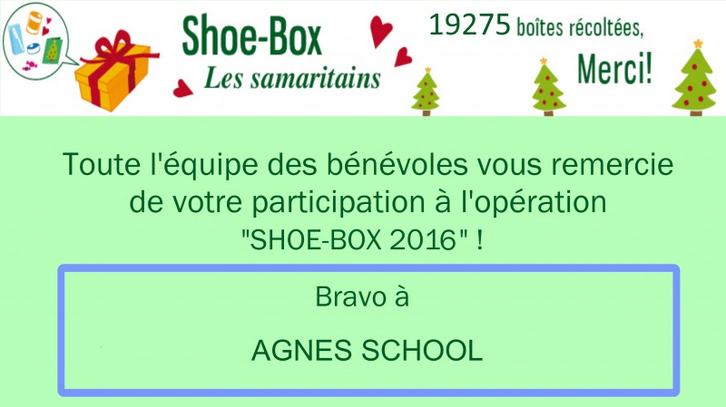AGNES SCHOOL shoe box 2